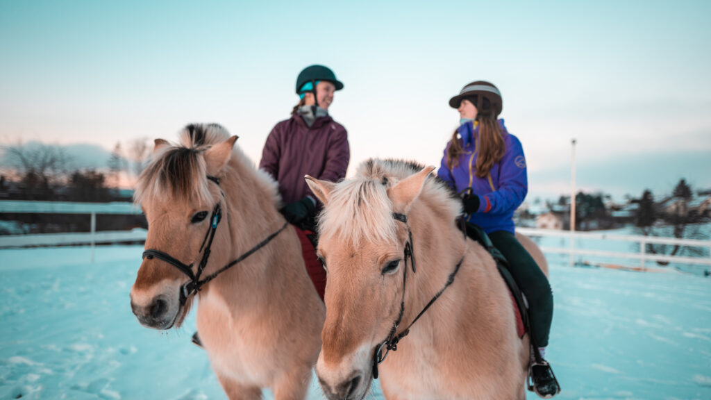 Hesteklubben Tyrifjord videregaende skole